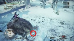 monster hunter world how to ride animals in iceborne