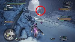 poogie monster hunter world iceborne how to bring to seliana