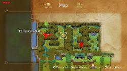 zelda links awakening toadstool location