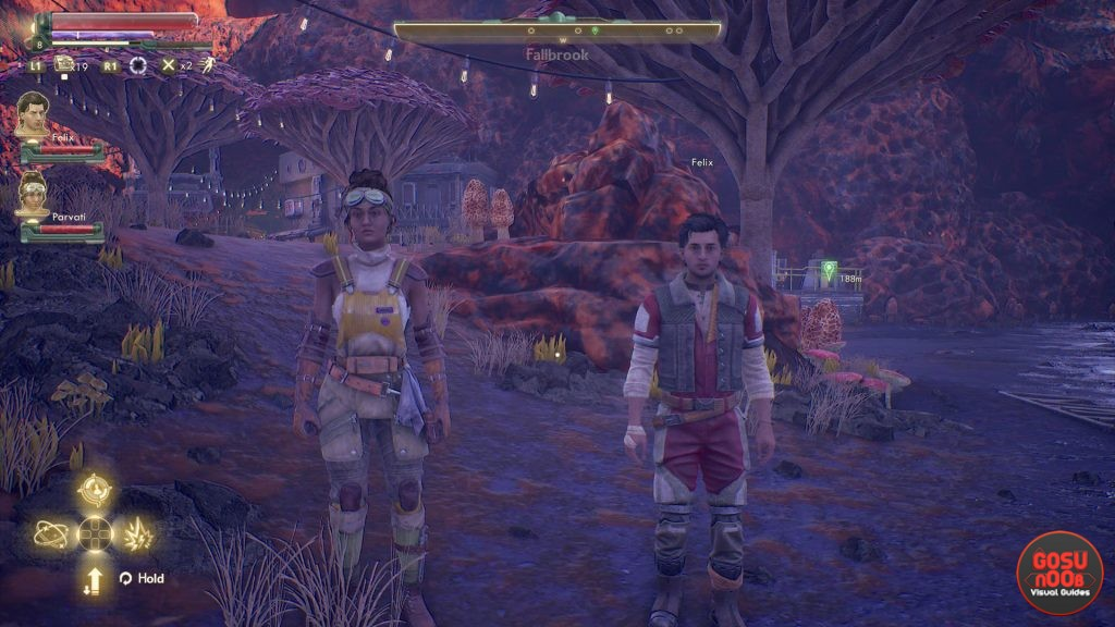 Outer Worlds Remove Helmet From Companion