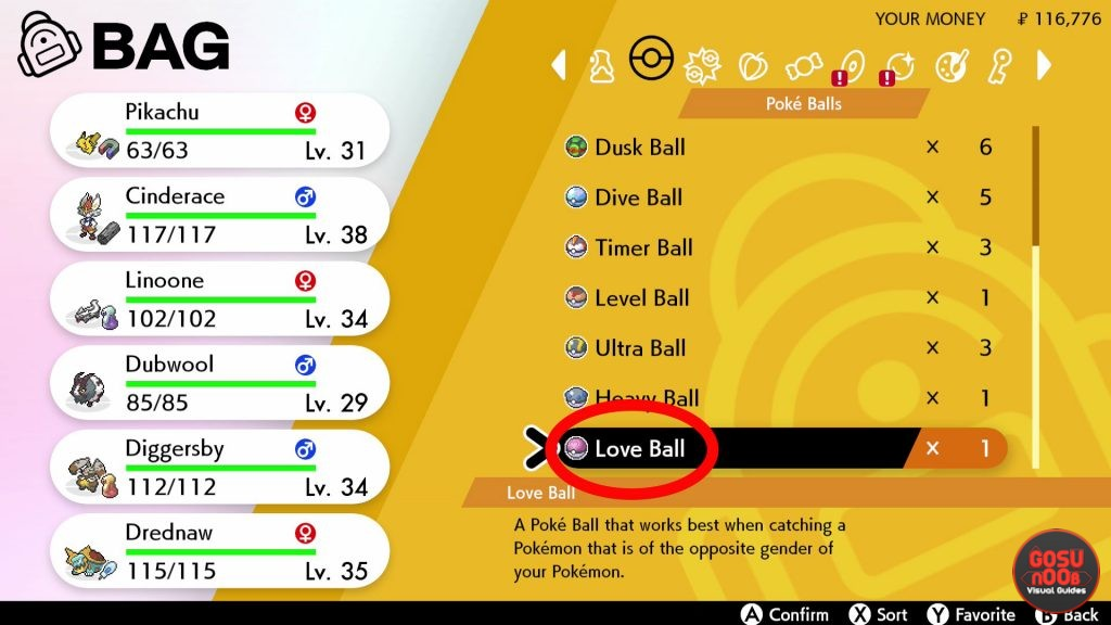 Love Ball Location in Pokemon Sword & Shield