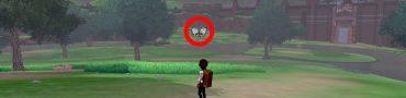Pokemon Sword & Shield Catch Flying Pokemon Windgull Butterfree