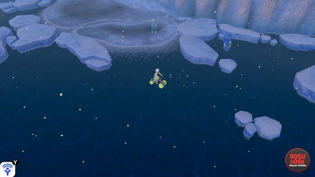Pokemon Sword & Shield How to Catch Water Pokemon & Travel on Water