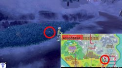 snom location pokemon sword & shield how to catch