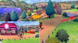 where to find nursery pokemon sword shield where to unlock breeding
