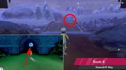 where to find snom pokemon sword shield