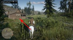 which rdr2 online moonshiners shack to choose best location