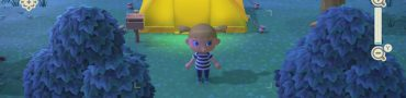How to Use Camera & Find Pictures in Animal Crossing New Horizons