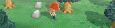 Problems with Sharing Island & Adding Second Player in Animal Crossing New Horizons