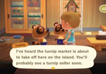 Turnips Where to Find & Sell in Animal Crossing New Horizons