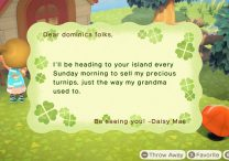 When Can I Find Daisy Mae in Animal Crossing New Horizons