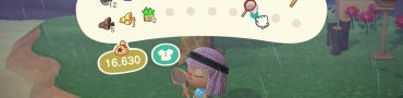 animal crossing new horizons how to reorder pocket inventory
