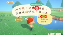 flowers animal crossing new horizons how to grow