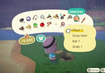 how to get different fruit for your island animal crossing new horizons