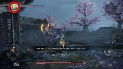 how to use yokai shift nioh 2