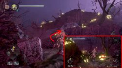 nioh 2 where to find kodama forest veiled in darkness