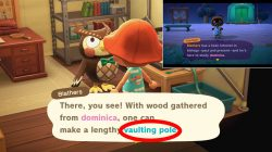 vaulting pole how to get animal crossing new horizons
