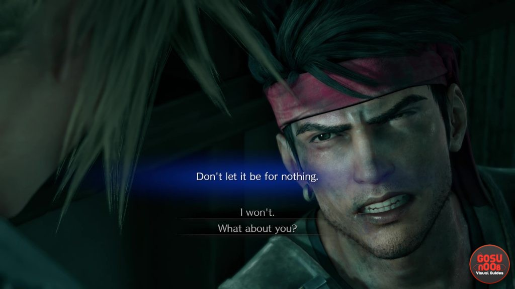 FF7 Remake Don't Let it Be for Nothing - I Won't or What about You