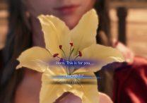 FF7 Remake Flower Peddler - How Much or I'm Good