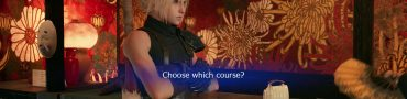 ff7 remake choose which course luxury standard poor man's