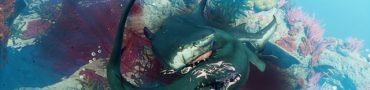 Maneater Launch Trailer Shows More Ridiculous Shark Action
