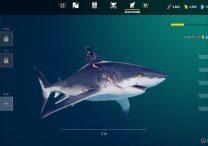 Maneater Shark Levels Teen Adult Elder Mega