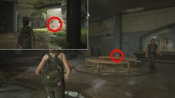 birthday gift chapter last of us 2 journal entry locations