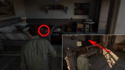 last of us 2 jackson packing up all collectibles where to find