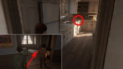 where to find collectibles last of us 2 jackson packing up chapter
