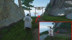 ghost of tsushima hidden altar frog statue