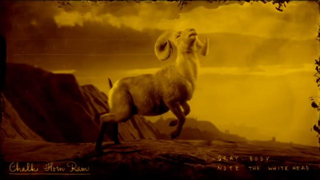 legendary ram rdr2 online chalk horn gabbro horn rutile horn locations