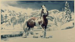 new horse gypsy cob red dead online