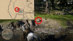rdr2 online legendary beaver location where to find
