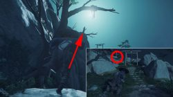 shinto shrines where to find ghost of tsushima