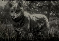 timber wolf locations rdr2 online