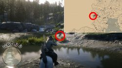 where to find legendary zizi beaver red dead online