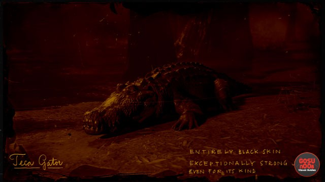 Legendary Gator RDR2 Online - Sun & Teca Gator