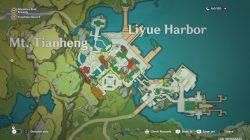 liyue souvenir shop genshin impact