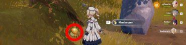 mushrooms genshin impact