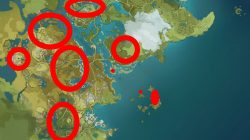 where to find cor lapis locations genshin impact
