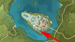 where to find genshin impact secret pirate treasure