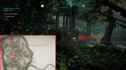 ac valhalla codex page locations forest temple