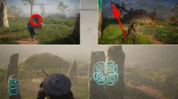 how to solve grantebridgescire lord and lady mystery standing stones ac valhalla