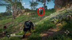 where to find hrothgar zealot spawn location ac valhalla