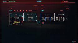 cyberpunk 2077 redeem preorder items