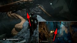 assassins creed valhalla mistress of the iron wood where to find root locations
