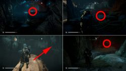 root locations ac valhalla mistress of the iron wood where to find