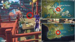 genshin impact yakshas guardian adepti location where to find