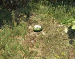 gta online peyote plants are back in new weekly update