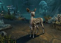 eso heroes reforged event grants respecs & free pet